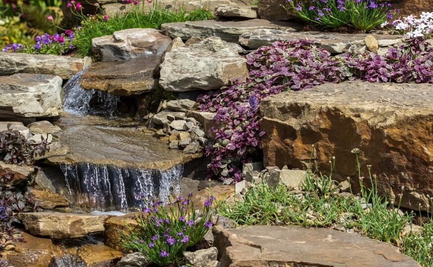 Skalniak w ogrodzie - jak zrobić - Ekoland Ogrody