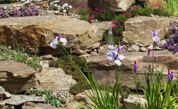 Skalniak w ogrodzie - roślinność, kamienie - Ekoland Ogrody